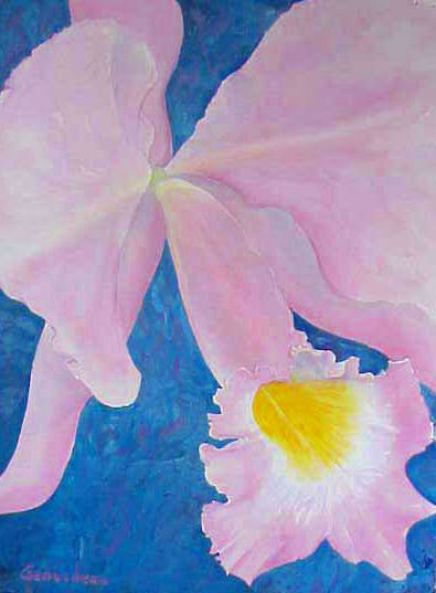 Cattleya orchid Watercolor art painting C schroederae