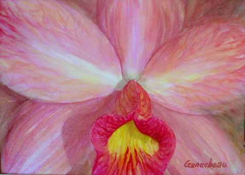 watercolor art painting orchid cattleya SLC Jilllian Lee Just Peachy
