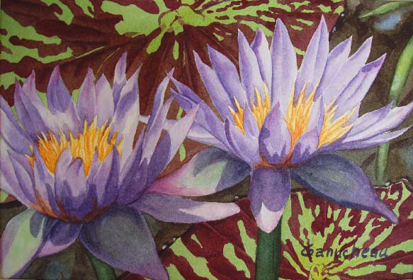 lily lilies waterlillies waterlily purple watercolor art painting