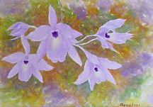 orchid Laelia rubescense cattleya watercolor painting