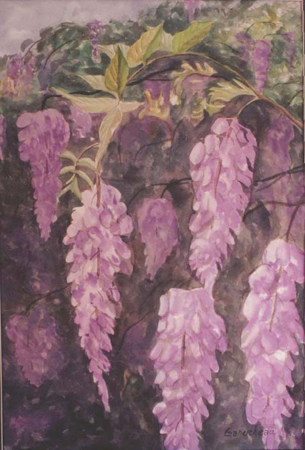 wisteria flower fine art still life painting watercolor