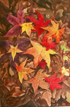 fall leaves fine art painting still life southern sweet gum tree