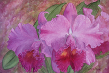 "Watercolor painting, The color ""Orchid"""