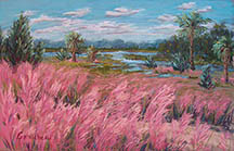 Flamingo grass, Helen Floyd Park, Little Jetties, Mayport, Jacksonville, Florida